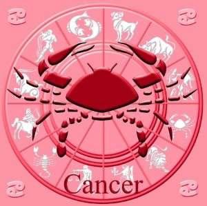 Mujer cancer hombre capricornio sexualmente