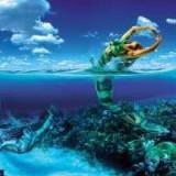 El hombre de signo de piscis y el amor